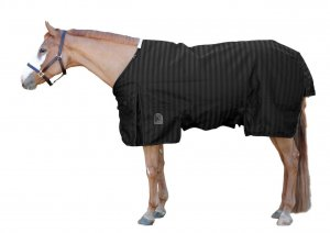 Eous Phelgon Turnout Blanket-Heavy Weight
