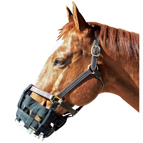 Best Friend Clip On Cribbing Muzzle Full/Average Horse