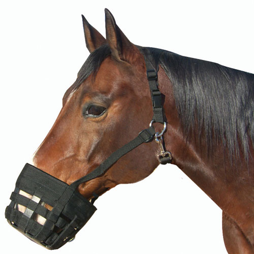 Best Friend Deluxe Grazing Muzzle Horse