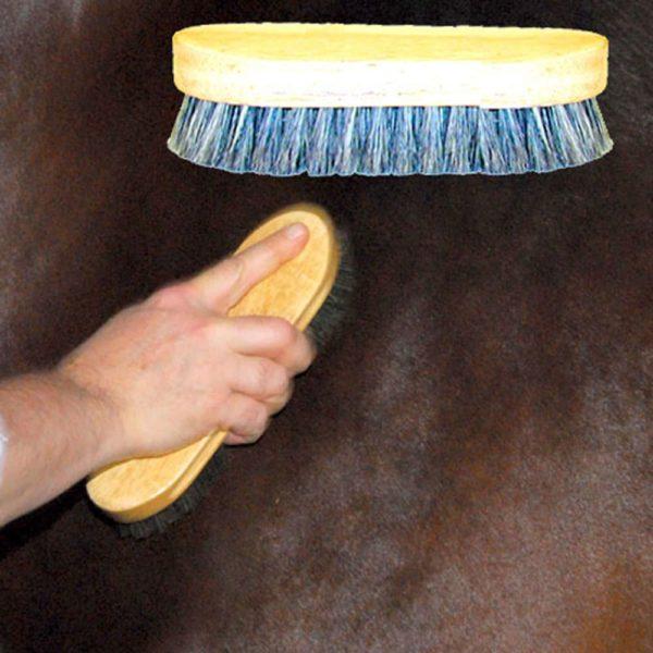 Body Brush Pig Bristle