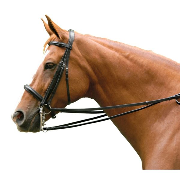 Exselle Elite Double Bridle Cob