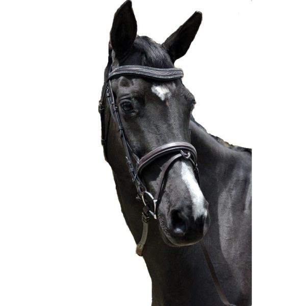 Exselle Elite Fancy Stitched Padded Bridle X Brow Black Black Cob