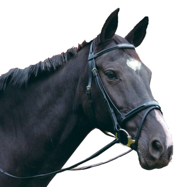 Exselle Elite Plain & Fancy Bridle-Black Black Horse