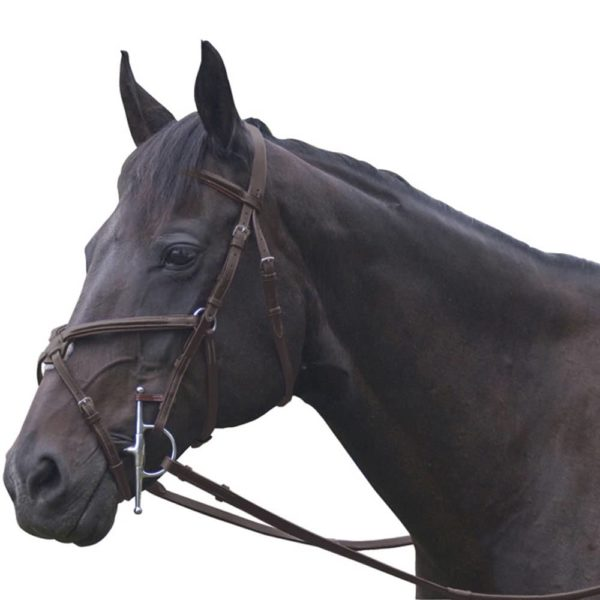 Exselle Elite Plain Raised Jumper Bridle Dark Havana Cob Dark Havana