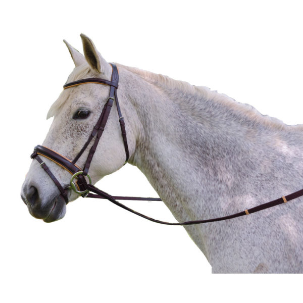 Exselle Elite Plain Raised Padded Bridle with x Brow Brown-Tan Brown / Tan Cob
