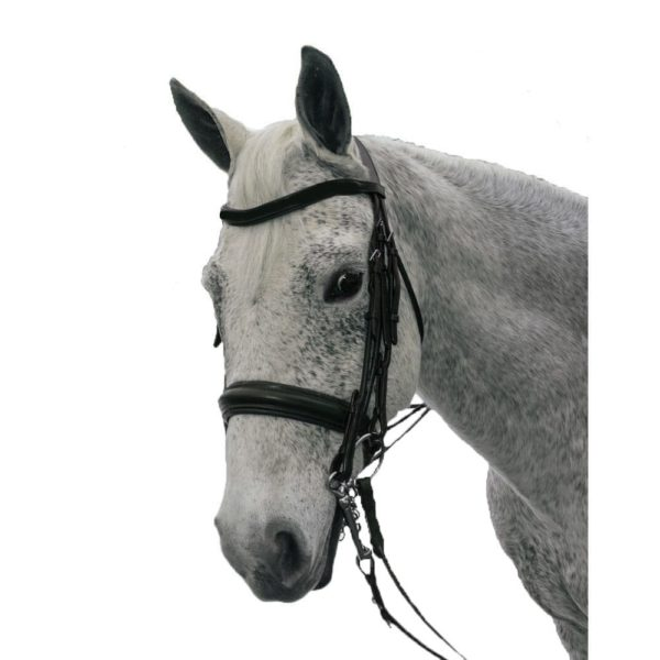 Exselle Elite Plain Rsd Padded Rolled Lther Dbl Bridle X Brow BK Black Cob
