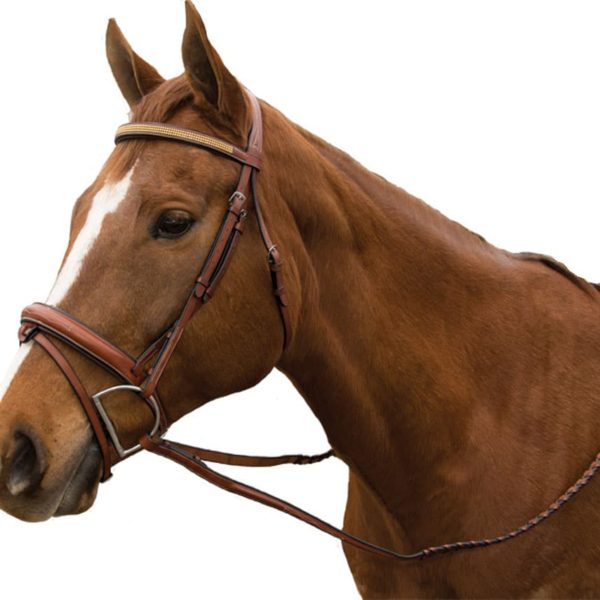 Exselle Elite Raised Padded Fancy Stitched Bridle with x brow BN Mid Brown Cob