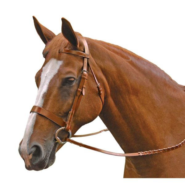 Exselle Elite Traditional Fox Hunt Bridle Cob