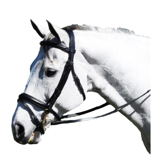 Exselle Elite Wide Dressage Bridle Cob