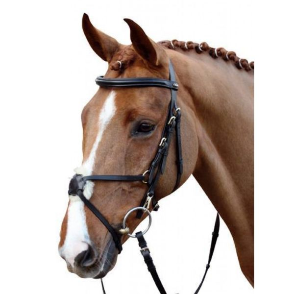HKM Bridles Bridle Mexican Style with Padded Grackle Noseband