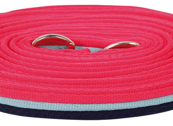 Harrys Horse Super Soft Lunge Line Pink Stripe