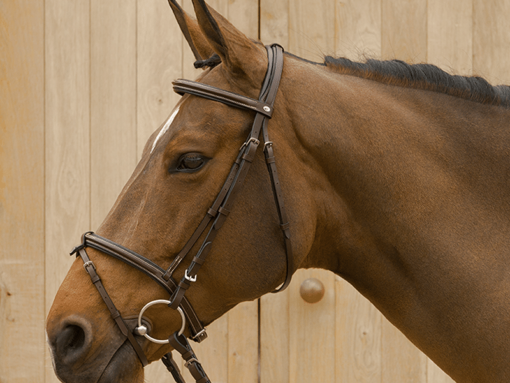 Lami-Cell Classic Bridle Without Flash