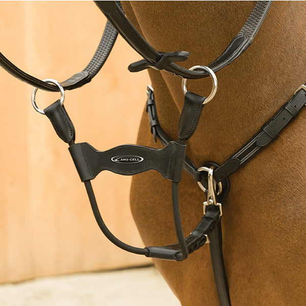 Lami-Cell Elastic Running Martingale