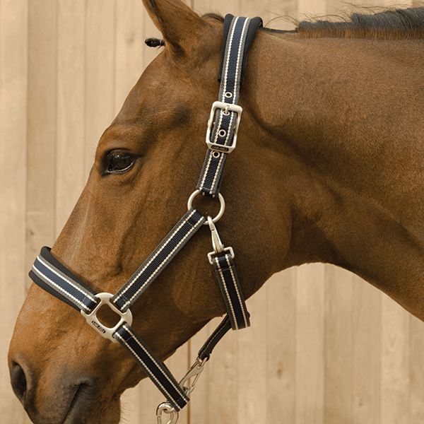 Lami-Cell Pro-Fit Breakaway Halter