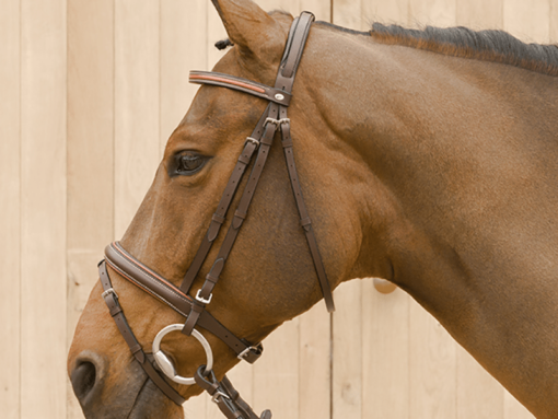 Lami-Cell Two Tone Bridle Without Flash