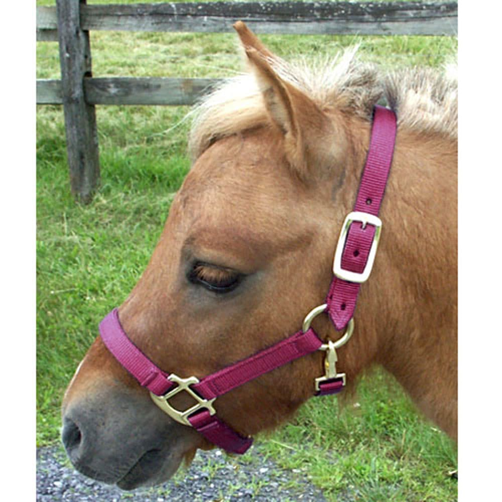 Miniature Horse Nylon Halter Large Mini Large Mini Black The