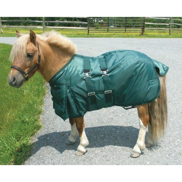 Miniature Horse Turn Out Blanket-Hunter Green 38""