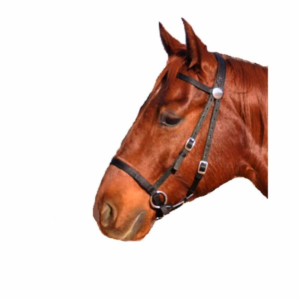 Nurtural Horse Nylon Bitless Bridle Black Mini
