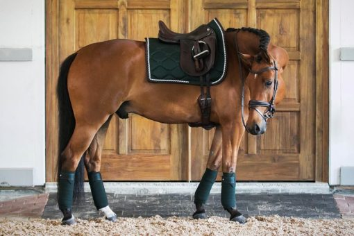 PS of Sweden Saddle Pad Monogram Dressage Emerald Green 2