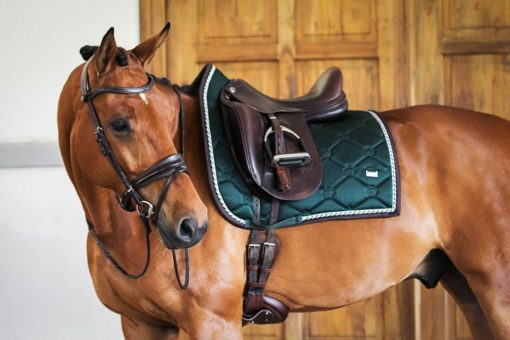 PS of Sweden Saddle Pad Monogram Dressage Emerald Green 4