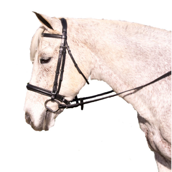 Pro-Trainer Padded Crank Dressage Bridle Black Cob