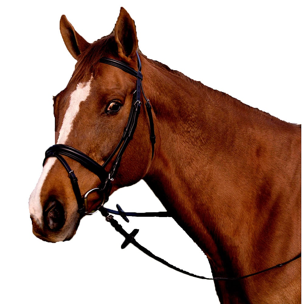 Pro Trainer Padded Crank Dressage Bridle With Flash