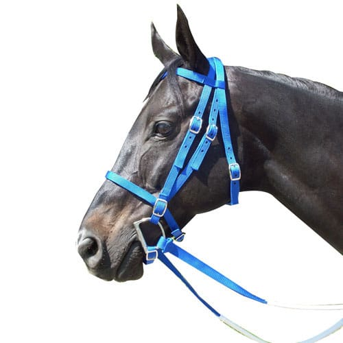 Racing Bridle - Nylon Blue
